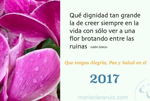 nuevo-ano-2017