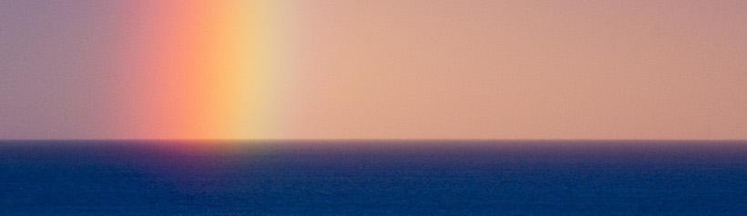 juego-ballena